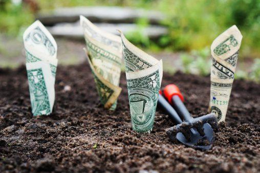 groeikapitaal